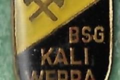 BSG-Kali-Werra-2