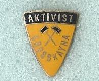 Aktivist_Grosskayna