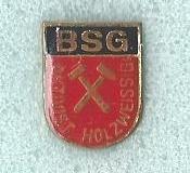 BSG_Aktivist_Holzweissg