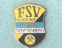 FSV_Brieske_Senftenberg_1