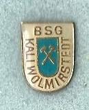 bsg_kali_wolmirrstedt