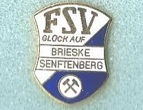 fsv_brieske_senftenberg_2