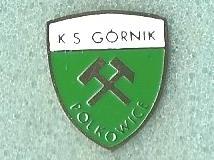 gornik_polkowice__1