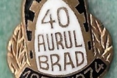 AS-Aurul-Brad-40-Years-4