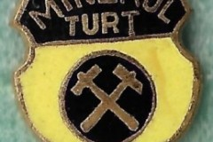 Minerul-Turt