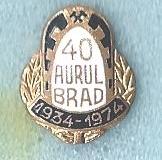 AS_Aurul_Brad_3_40_years