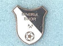 Minerul_Bihor