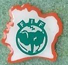 Ivorian FA
