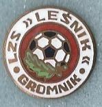 IZS Lesnik Gromnik