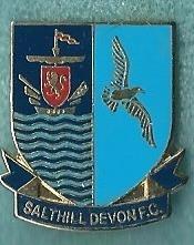 Salthill Devon