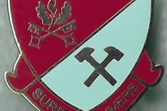 Surrey-Hammers