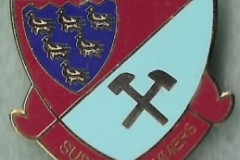 Sussex-Hammers-