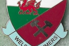 Welsh-Hammers