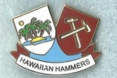hawaiien_hammers_1