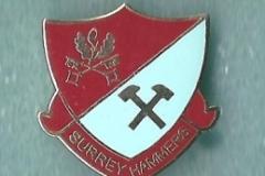 surrey_hammers